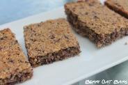 blueberry oat bars copy